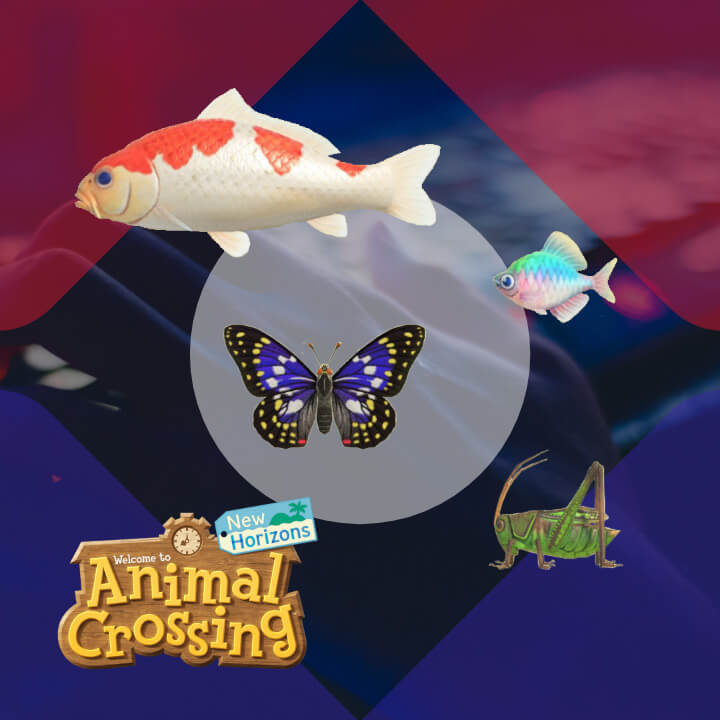 Animal Crossing: New Horizons Guessing Game